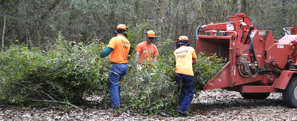Advantages of Hiring Land Clearing Professionals