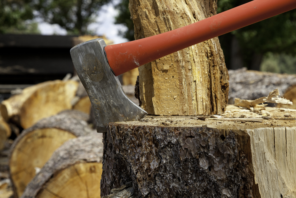 Safe and effective ways to remove tree stumps